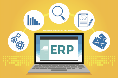 ERP-Strategy